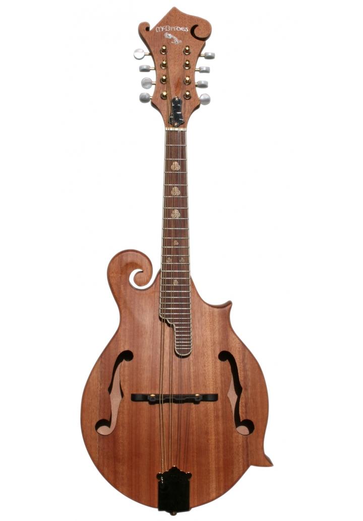 McBrides FM61 F Style Mandolin  F Style Mandolin Drawing