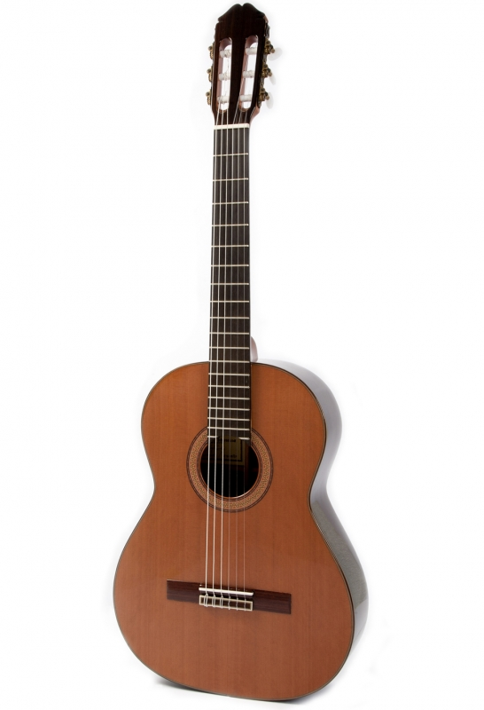 raimundo 150 handcrafted classical guitar with case. Black Bedroom Furniture Sets. Home Design Ideas