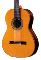 Nylon String | Classical Guitars